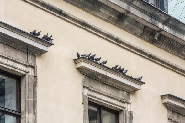 13-Maurizio Cattelan, Others 2011, _Amen_ 2012, Ujazdowski Castle, Warsaw, photo Zeno Zotti