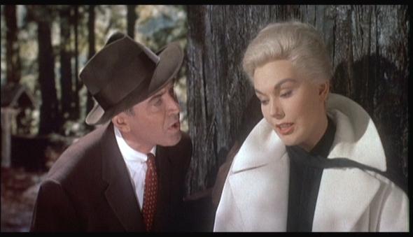 sight and sound  la rivista di cinema e la sua classifica dei capolavori mondiali La donna che visse due volte Hitchkock rossella farinotti labrouge