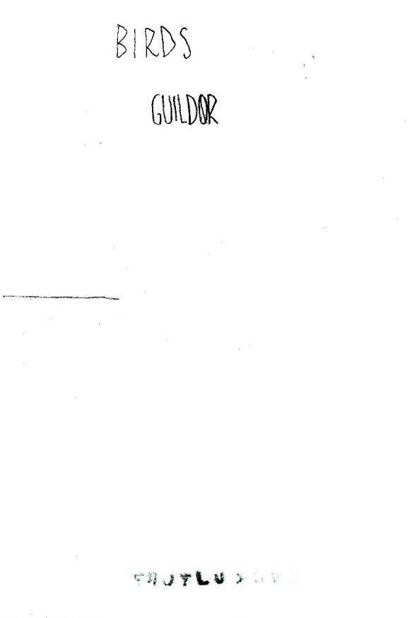 Guildor - sub culture fanzine project by thomas berra