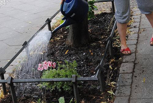 god save the green un film indipendente per salvare il pianeta guerrill garden Berlino labrouge