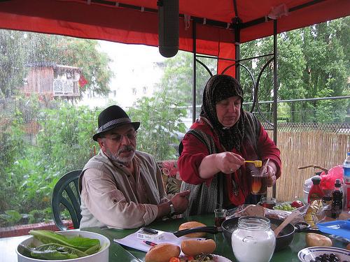 god save the green un film indipendente per salvare il pianeta turkish garden labrouge