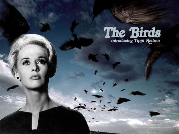 The-Birds-Gli uccelli Hitchcock dal grande schermo al museo labrouge
