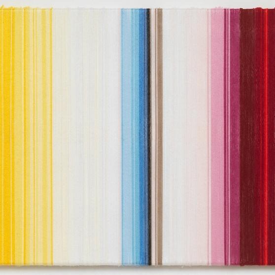 Rosemarie Trockel Bregenz khunstaus minimal painting labrouge